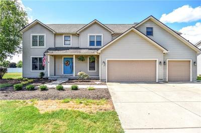 Boardman Single Family Home For Sale: 7818 Huntington Cir
