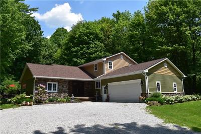 Chardon Single Family Home For Sale: 9972 High Country Dr