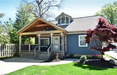 Avon Lake Single Family Home For Sale: 113 Mull Ave