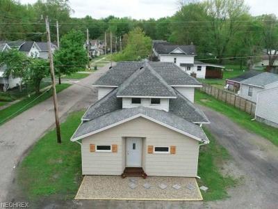 Newton Falls Single Family Home For Sale: 1133 Warren Rd