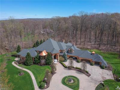 Kirtland Hills Single Family Home For Sale: 8700 Sanctuary Dr