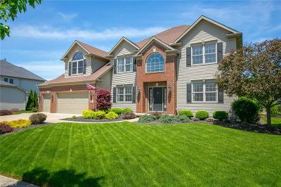 Strongsville Single Family Home For Sale: 22286 Northwood Trl