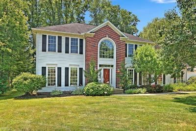 Summit County Single Family Home For Sale: 87 Ambrose Dr