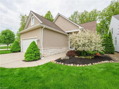 Avon Lake Single Family Home For Sale: 639 Lakeside Dr