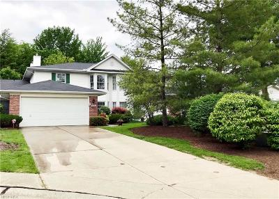 Strongsville Single Family Home For Sale: 18452 Woodside Xing South