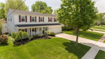 Elyria Single Family Home For Sale: 155 Brookvalley Dr