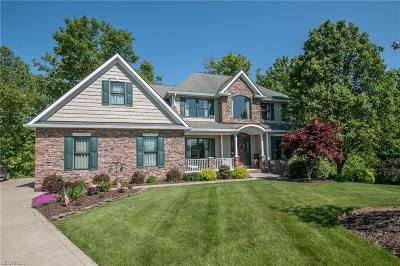 North Royalton Single Family Home For Sale: 17345 Parkside Dr