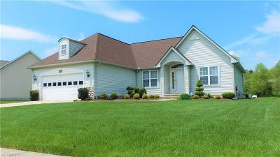 Geauga County Single Family Home For Sale: 202 Fox Pointe Dr