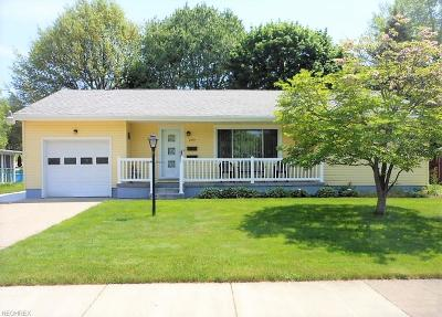 Summit County Single Family Home For Sale: 285 Homewood Ave