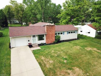 Wadsworth Single Family Home For Sale: 244 Franks Ave