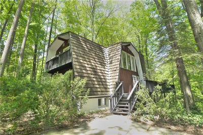 Geauga County Single Family Home For Sale: 10767 Mulberry Rd