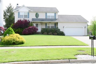 Lake County Single Family Home For Sale: 38330 Crossbrook Ave