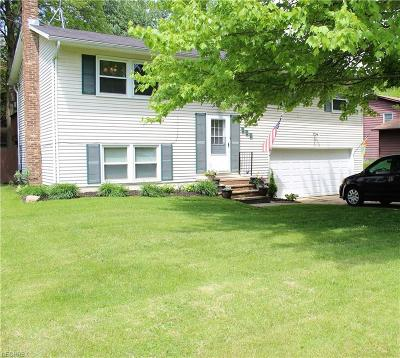 Seville Single Family Home For Sale: 221 Water St