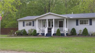 Ashtabula County Single Family Home For Sale: 5863 Ogden Ave