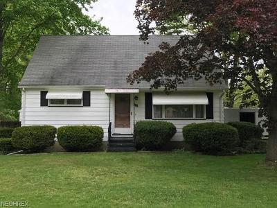 Newton Falls Single Family Home For Sale: 310 Taylor Ave