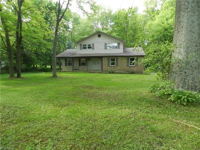Canfield Single Family Home For Sale: 4746 Leffingwell Rd