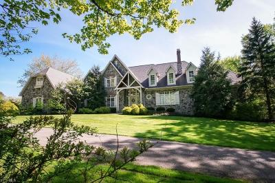 Geauga County Single Family Home For Sale: 8880 Antelope Run
