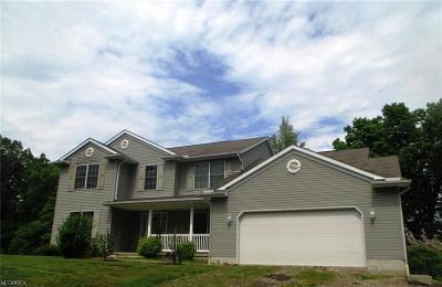 Zanesville OH Single Family Home For Sale: $209,900