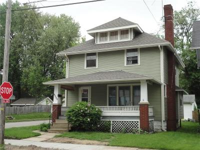 Summit County Single Family Home For Sale: 1079 Big Falls Ave