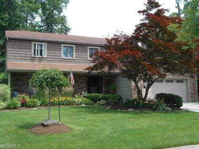 Olmsted Township Single Family Home For Sale: 7025 Grace Dr