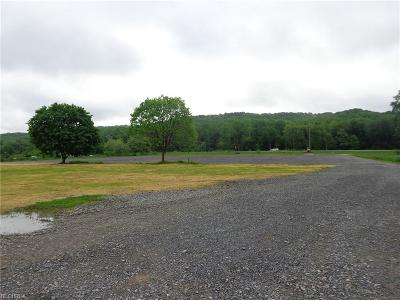 New Philadelphia OH Residential Lots & Land For Sale: $389,000