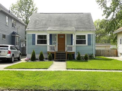 Elyria Single Family Home For Sale: 254 Marseilles Ave
