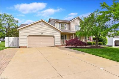 Summit County Single Family Home For Sale: 5295 Camden Dr