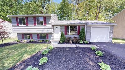 Lake County Single Family Home For Sale: 1595 Trotter Ln
