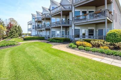 Lake County Condo/Townhouse For Sale