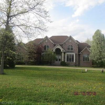 Summit County Single Family Home For Sale: 4399 Kings Forest Blvd
