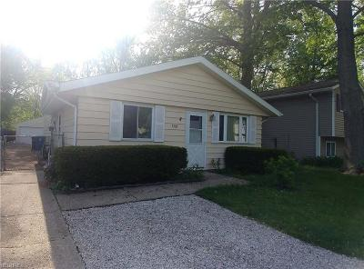 North Ridgeville Single Family Home For Sale: 5797 Main Ave