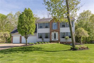 Lake County Single Family Home For Sale: 9816 Patriot Ct