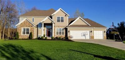 Mentor Single Family Home For Sale: 9671 Executive Ct