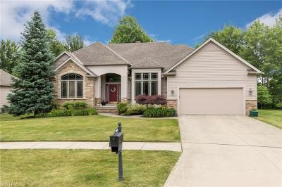 Solon Single Family Home For Sale: 6689 Brandamore Ct