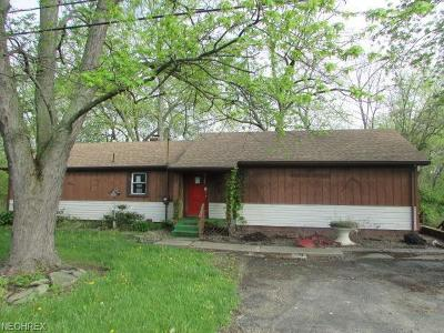 Leavittsburg Single Family Home For Sale: 3038 State Route 5