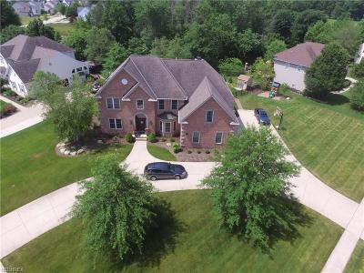 Avon Lake Single Family Home For Sale: 320 Crestwood Dr