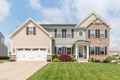 Wadsworth Single Family Home For Sale: 1526 Buckhurst Run