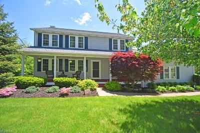 Geauga County Single Family Home For Sale: 18875 Thorpe Rd