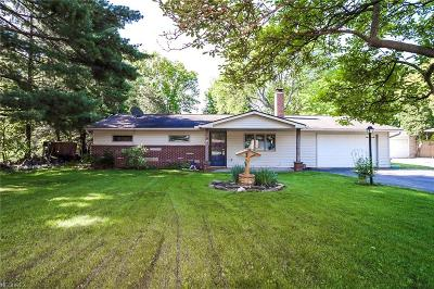North Ridgeville Single Family Home For Sale: 36161 Hedgerow Park Dr