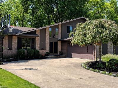 Seven Hills Single Family Home For Sale: 7880 Cresthill Dr