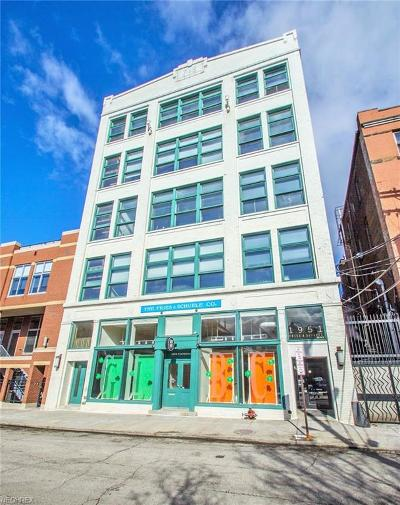 Cleveland Condo/Townhouse For Sale: 1951 West 26th St #202