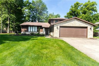 Highland Heights Single Family Home For Sale: 620 Rutland Dr