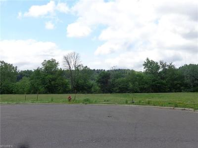 New Philadelphia OH Residential Lots & Land For Sale: $499,900