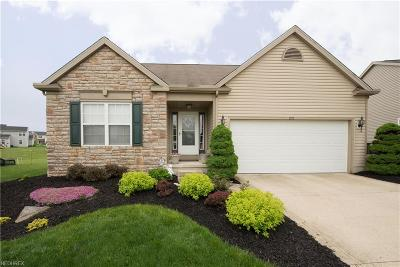Wadsworth Single Family Home For Sale: 225 Gatwick Grove Cir