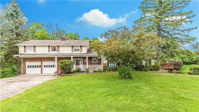 Burton Single Family Home For Sale: 14464 Peckham Rd