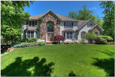 Chagrin Falls Single Family Home For Sale: 17321 Tall Tree Trl