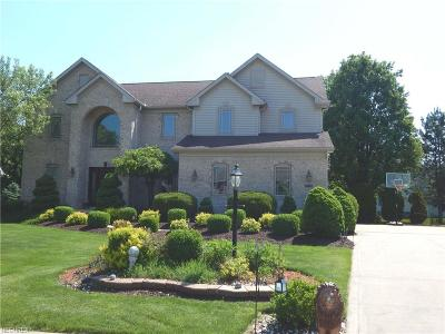 Strongsville Single Family Home For Sale: 18923 Glen Cairn Way