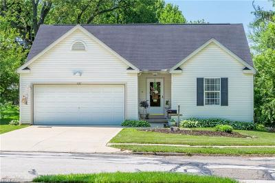 Wadsworth Single Family Home For Sale: 121 Franks Ave