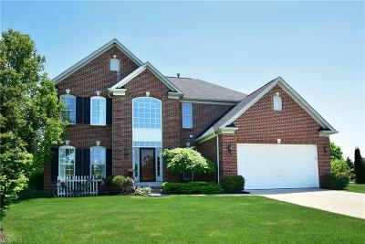North Ridgeville Single Family Home For Sale: 37733 Stoney Lake Dr