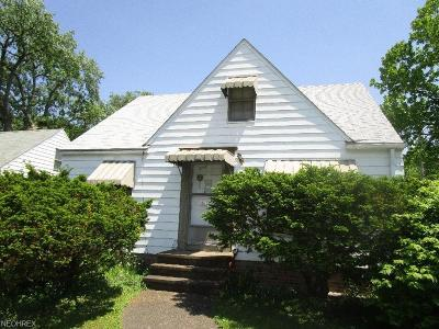 Cleveland Single Family Home For Sale: 3985 East 147th St